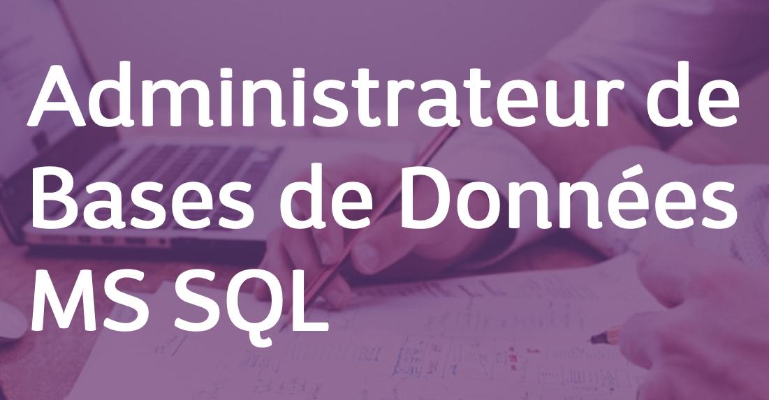 Administrateur de Bases de Données MS SQL – FR/EN