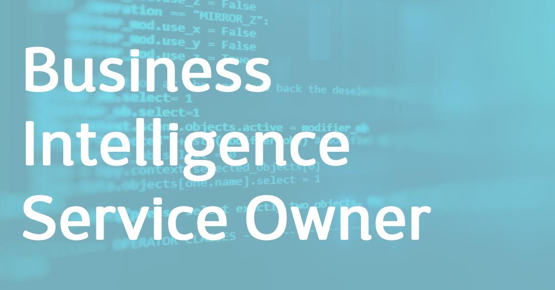 Business Intelligence Service Owner – EN