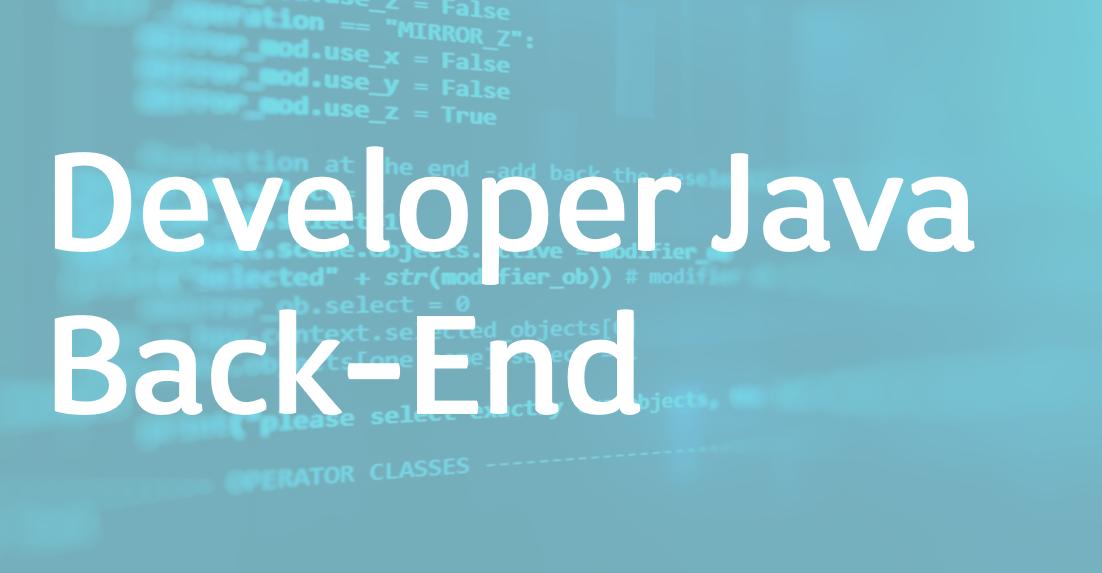 Developer Java Back-End – FR/EN