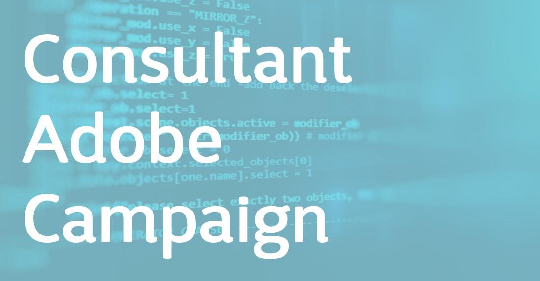 Consultant Adobe Campaign – FR/EN