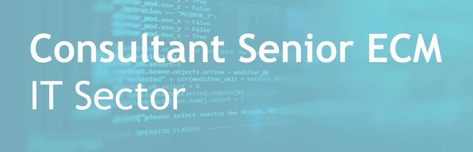 Consultant Senior ECM – IT Sector – FR/EN