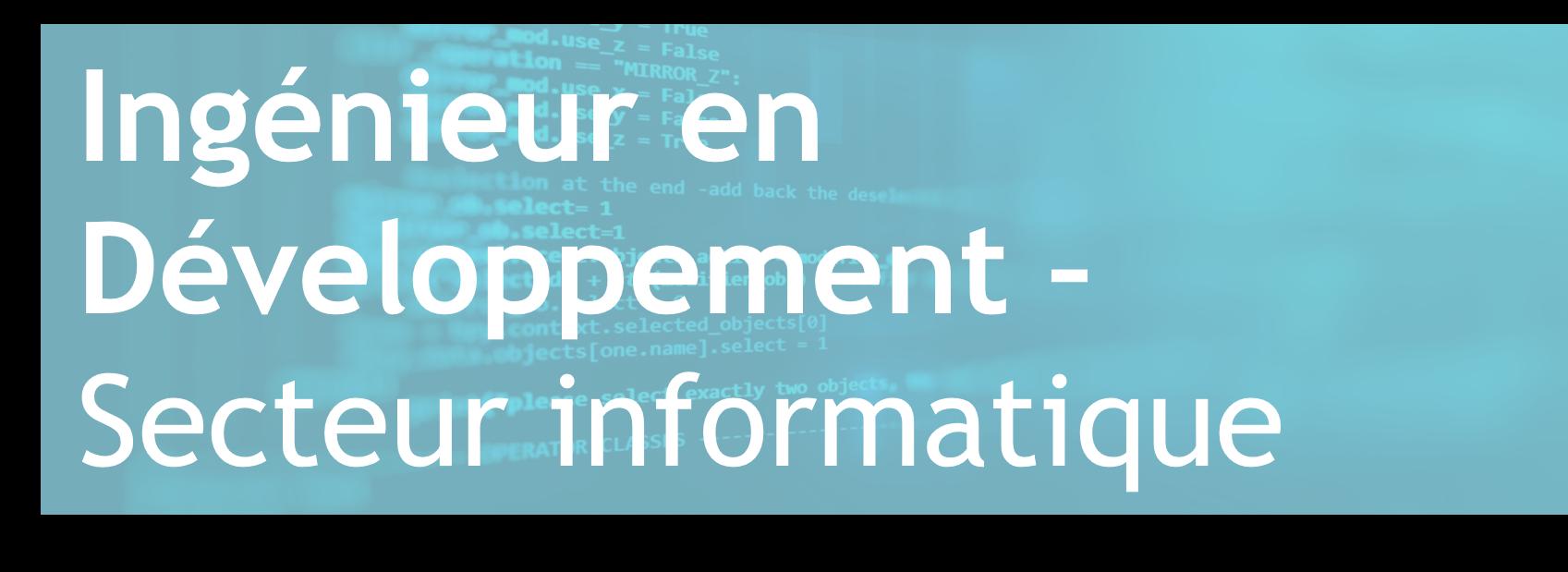 Ingénieur en Développement – Secteur de l'informatique – FR/AN
